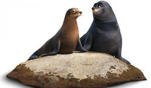leones marinos buscando a dory